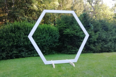 hexagon-bílý-1